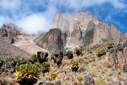 Mount Kenya, Africa