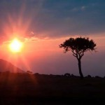 Sonnenuntergang an Maasai Mara, Kenia