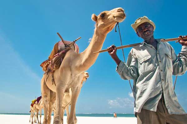 Kenia auf einer Safari kennenlernen