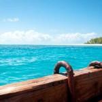 Bei einer Bootstour Flora und Fauna von Kenia kennenlernen